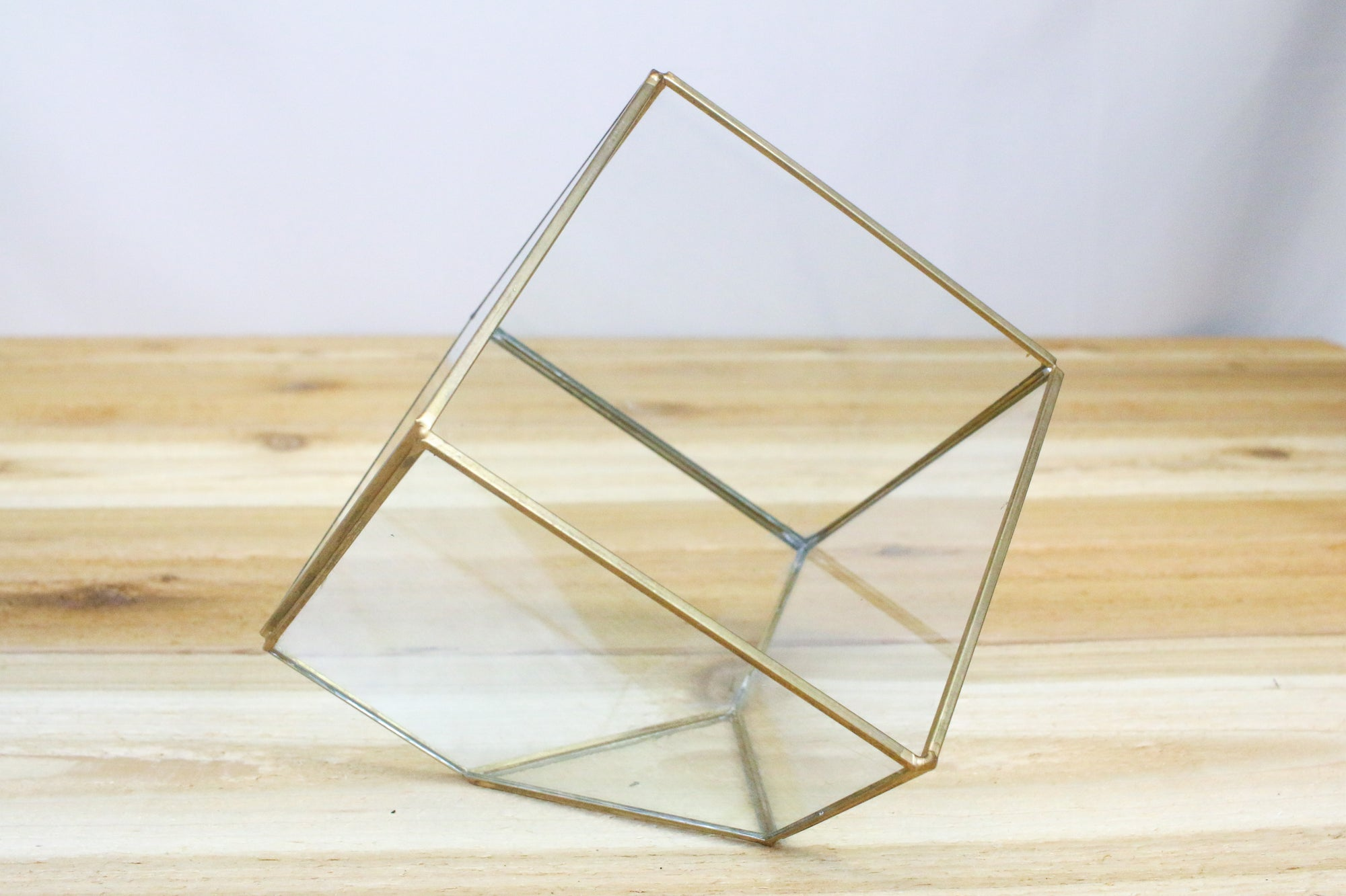 Geometric Air Plant Terrarium - Heptahedron Design with 7 Sides from AirPlantShop.com