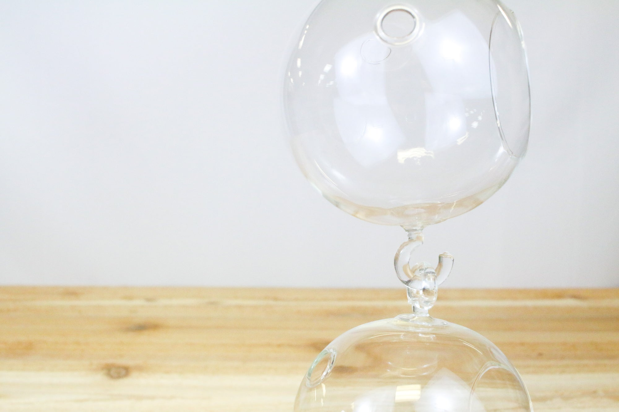 Wholesale: Double Hook Hanging Globe Terrariums [Min Order 12]