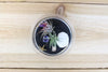 Wholesale: Pura Vida Terrarium with Black Sand and Air Plant [Min Order 12]