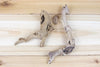 Wholesale: Mini Sandblasted Grapewood Branch with 1 Air Plant [Min Order 12]