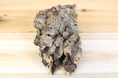 SALE: 40% Off [3 or 6 Pack] Small Natural Cork Tree Bark with Two Tillandsia Air Plants - Approximately 4 X 6 Inches with Glue from AirPlantShop.com