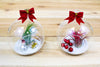 Holiday Globe Set - Super Cute set of Two Cheerful Terrariums