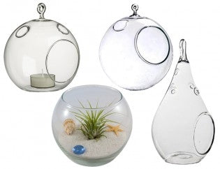 Collection of 4 Hand Blown Glass Terrariums