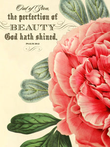 "The Perfection of Beauty Psalm 50:2  18"" x 24"" Vintage Print"