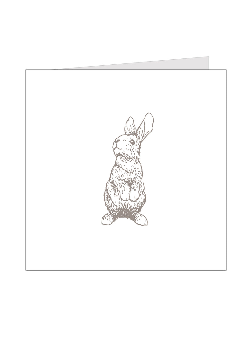LP Gift Card - Bendigo Rabbit