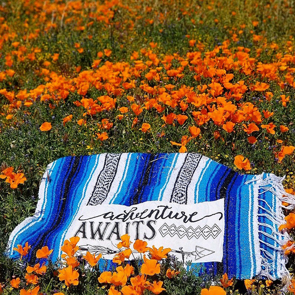 Adventure Awaits Blue Mexican Throw Blanket laying along a field of wild  flowers