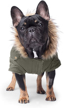 Load image into Gallery viewer, Alaskan Army Parka by Canada Pooch