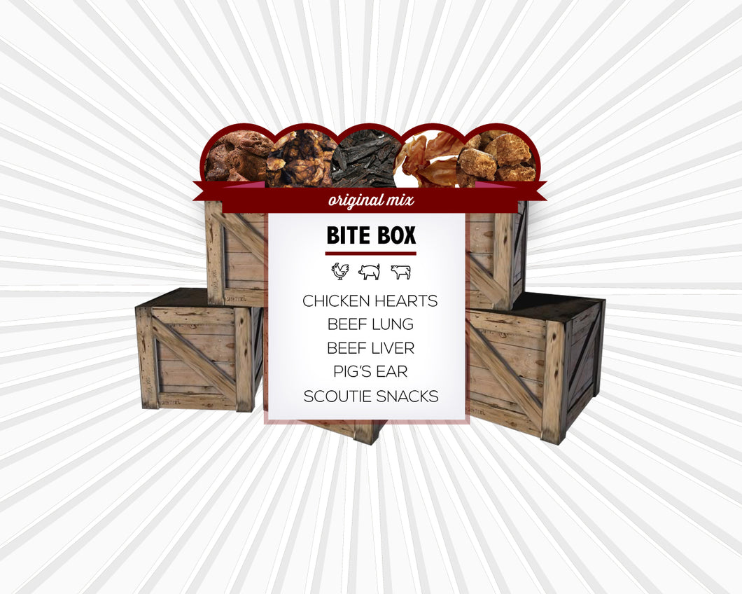 Image of Original Bite Box