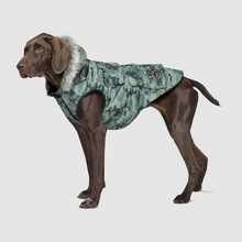 Load image into Gallery viewer, Everest Explorer Jacket by Canada Pooch