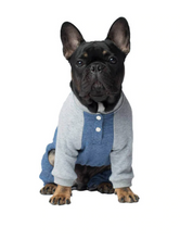 Load image into Gallery viewer, Frosty Fleece Sweatsuit by Canada Pooch