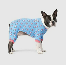 Load image into Gallery viewer, The Popsicle Onsie by Canada Pooch