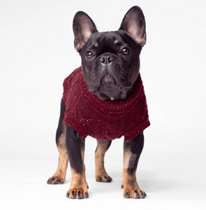 Cambridge Cableknit Sweater by Canada Pooch