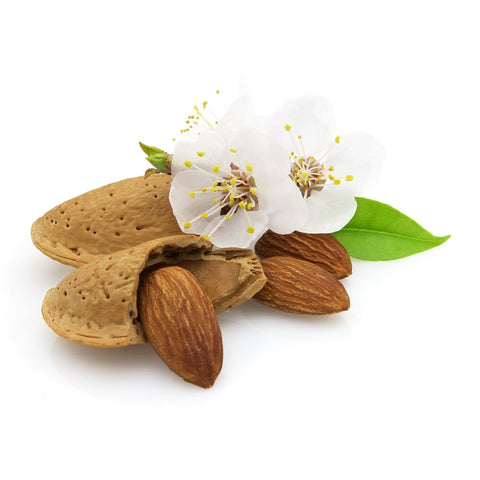 Almond (sweet) Carrier Oil