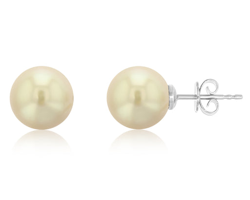 Quinn Golden South Sea Stud Earrings