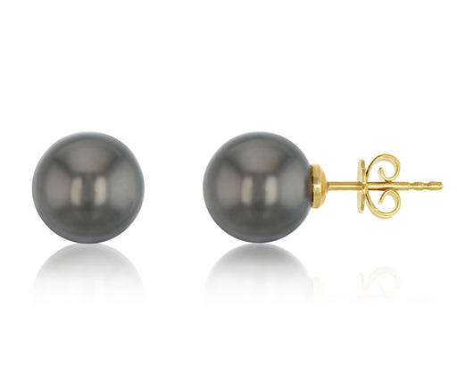 Quinn Tahitian Stud Earrings