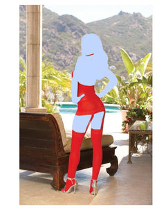 Sheer Dress w/Lace Trim, Attached Garters & Thigh High Stockings - Red