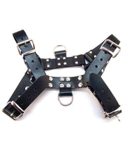 Rouge Over the Head Medium Harness