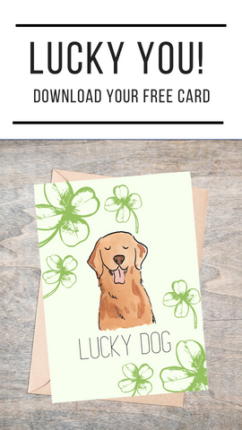 "Card that says ""Lucky You"" with green shamrocks and dog"