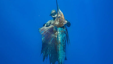 Collections – Adreno Spearfishing