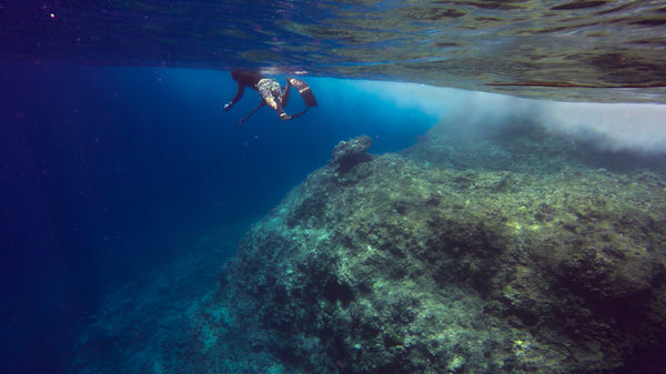 spearfishing fiji