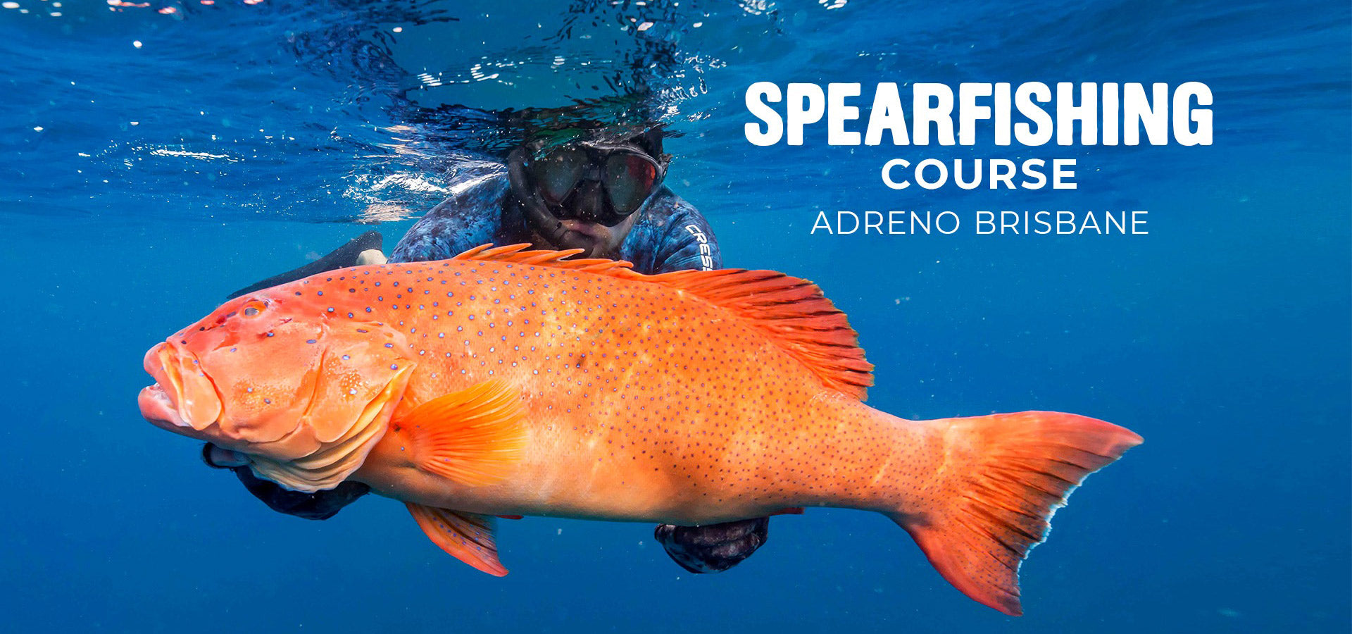 Brisbane Spearfishing Course