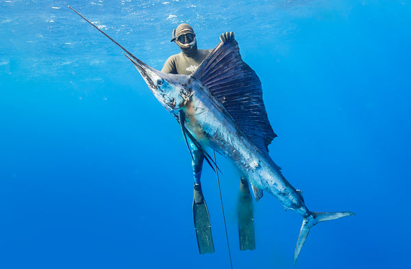 Adreno Founder Tim Neilsen and his Sailfish.