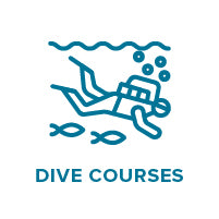 dive courses faq