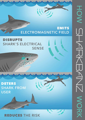 Sharkbanz 2.0 Shark Deterrent Band - Slate/Azure