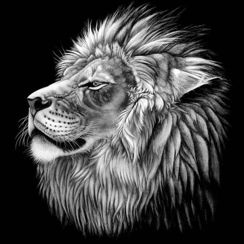 Black and White Lion Head – Trypaint