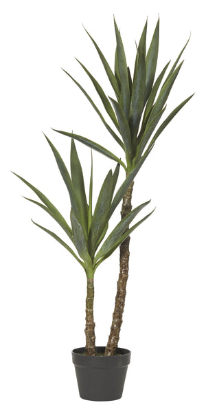 Dracaena Tree 112cm Green