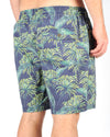 Fern Short Green