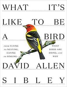 What It's Like to Be a Bird: From Flying to Nesting, Eating to Singing, What Birds Are Doing, and Why, by David Allen Sibley