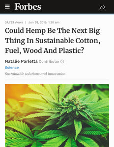 Could Hemp Be The Next Big Thing In Sustainable Cotton, Fuel, Wood And Plastic?