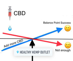 CBD balance point and how much CBD do I need answered