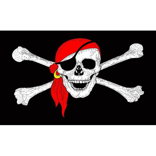 Pirate Flag - Jumbo
