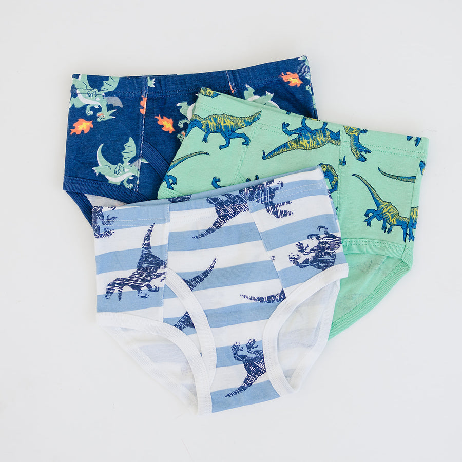 Boys 3-pack underwear - Dinosaurs
