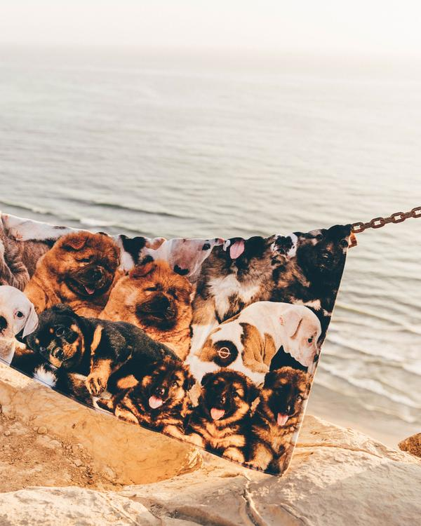 Puppy Party Beach Towel
