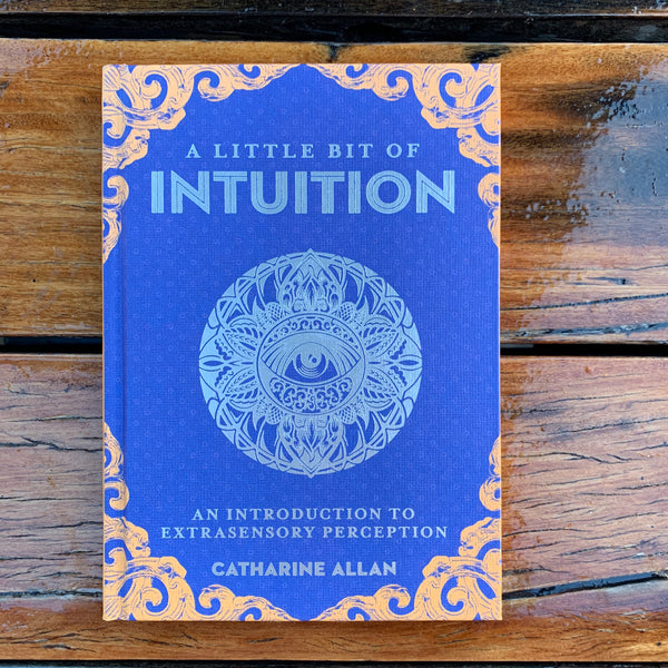 A Little Bit Of Intuition Catharine Allan