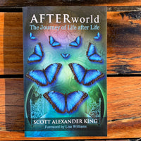 Afterworld Scott King