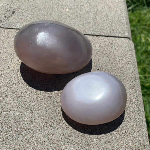 Agate Palm Stone Enhydro