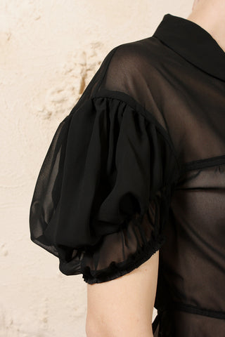 Sheer Puff Sleeve Blouse