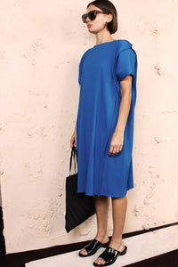 Tuck APOC Dress Blue