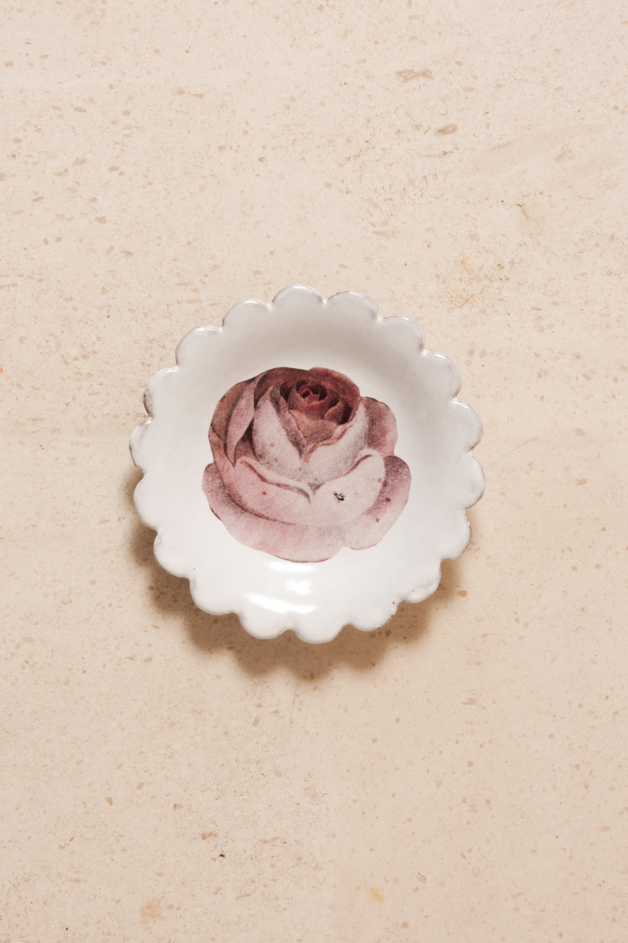 Rose and Insect Saucer