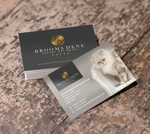 Business Cards - Printmeit.com