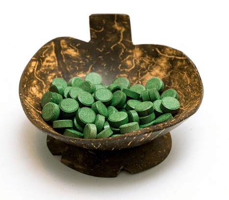 chlorella vulgaris algae
