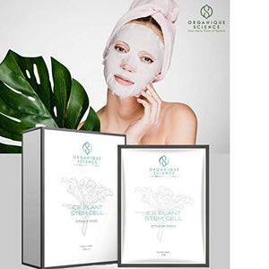 Ice Plant Stem Cell Facial Sheet Masks 6-Boxes