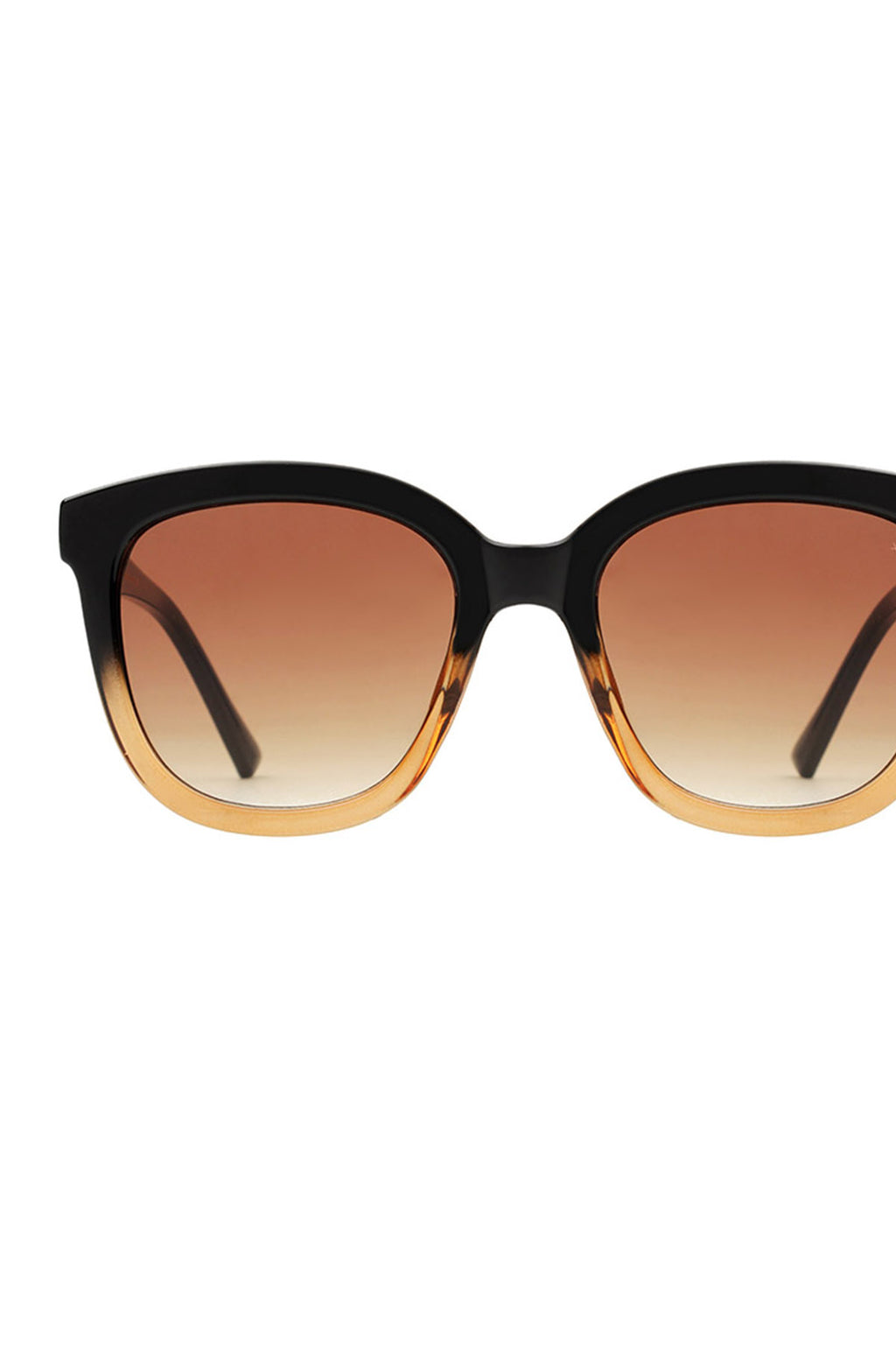 Billy Sunglasses Black/Brown Transparent