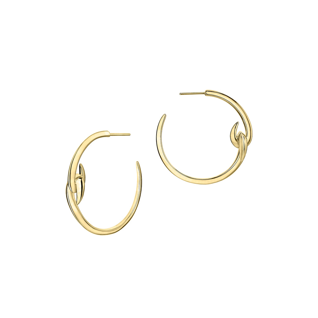 Yellow Gold Vermeil Hook Hoop Earrings