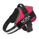 Personalized All Purpose™ No Pull Dog Harness (2020)