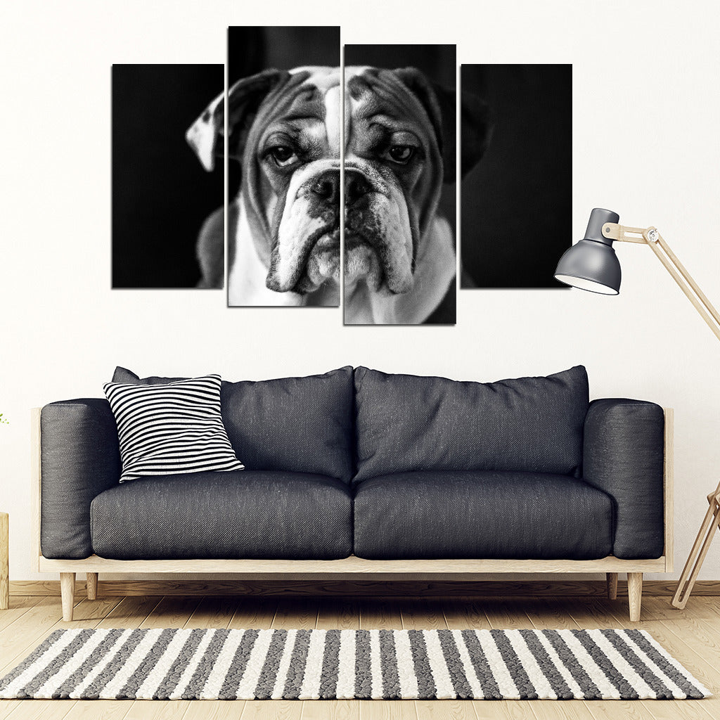 Bull Face 4 Piece Framed Canvas